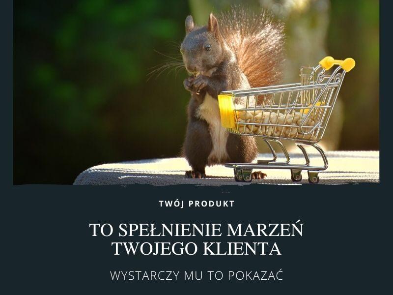 Opisy produktów / Katarzyna Zubrzycka-Sarna